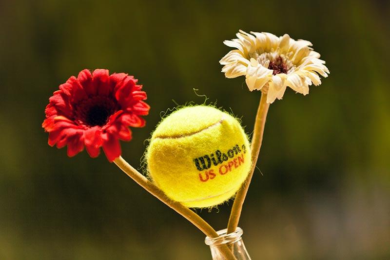 Una pallina da Tennis - Scatto fotografico effettuato durante il Torneo Internazionale di Tennis